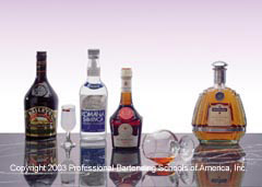 Learn professional mixology at the Bartenders Professional Training Institute in Buffalo, Rochester and Syracuse, New York!
